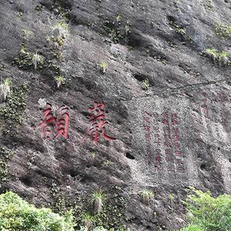 武夷山寻茶之旅
