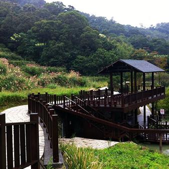 台湾木栅观光茶园
