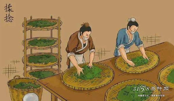 > 茶叶制作流程_茶叶的种类  9张图带你了解普洱茶生茶制作全过程