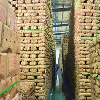 普洱茶该如何存放 不同的仓储环境有什么特点