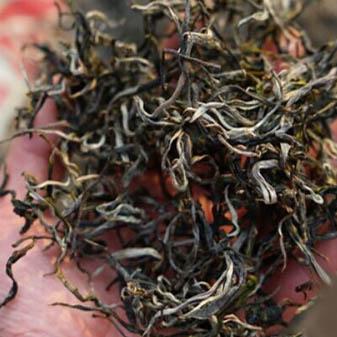 普洱茶为什么会受潮发霉 有效的清理小妙招帮您忙