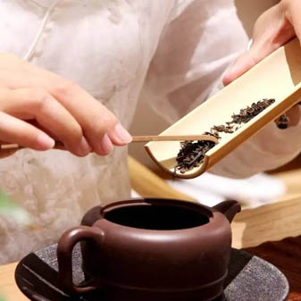 泡一杯茶需要放多少茶叶 不同泡法的投茶量不同