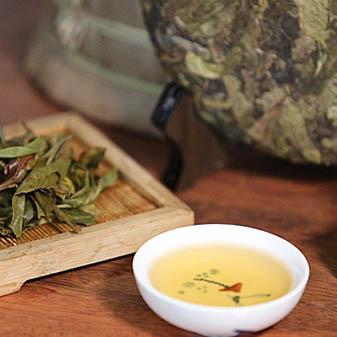 3158茶叶网教你如何鉴别普洱茶的品质