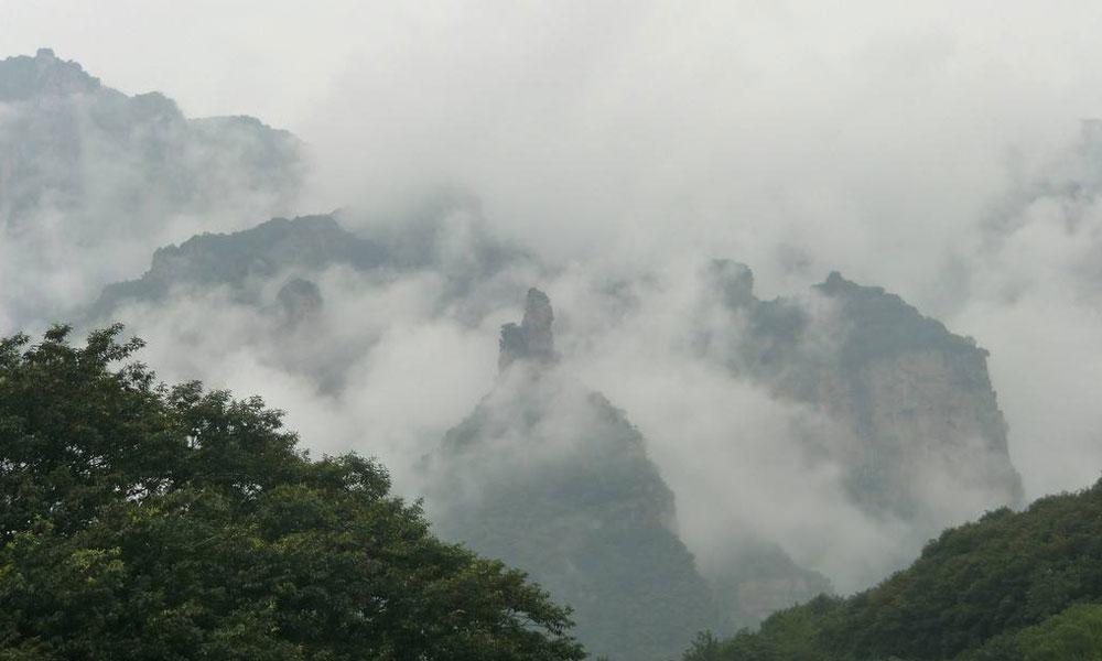 3.同时,高山上一年四季常常云雾弥漫,因为有雾,茶树受直射光时间短,漫射光多,光照较弱,这正好适合茶树的耐阴习性。由于高山雾日天气多,空气湿度就比较大,这样长波光被云雾挡了回去,照不到植物上,而短波光透射力强,却可以透过云层照射到植物上。