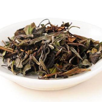 白茶老茶与新茶对比 到底老茶好还是新茶好