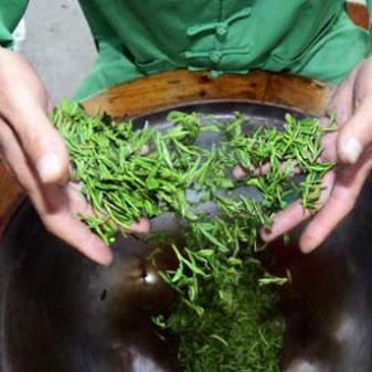 西湖龙井茶的泡法是什么 冲泡西湖龙井茶有什么注意事项