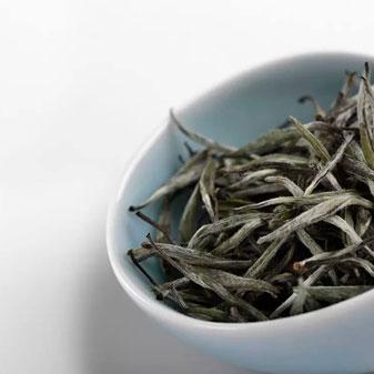 鲜叶越嫩 白茶的滋味就越好吗