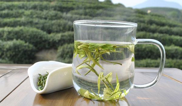 寿眉茶.jpg