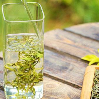 重庆名茶代表永川秀芽 永川秀芽怎么泡