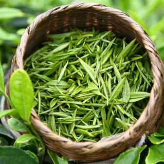 """绿茶中的""""战斗茶"""" 开化龙须"""