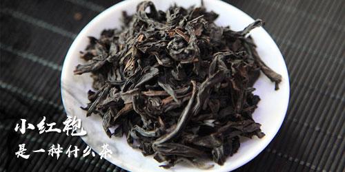 小红袍是什么茶 茶叶品种介绍