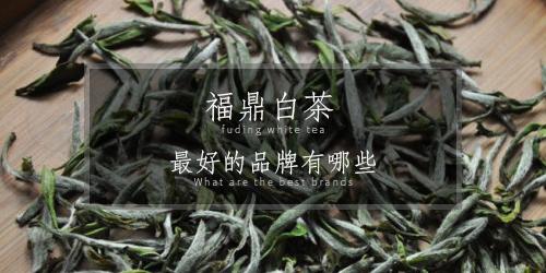 福鼎白茶品牌有哪些 福鼎白茶最好的品牌