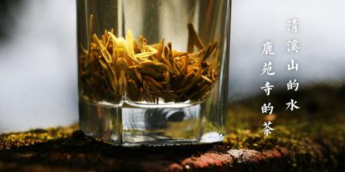 清溪寺的水 鹿苑寺的茶