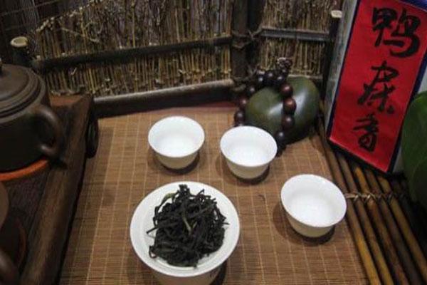 鸭屎香属于什么茶?鸭屎香的茶叶你喝过了吗?